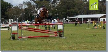 Tiffany & LH Johnny on course in the Open 1.30m