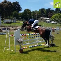 wes-and-oaks-volta-on-course-open-1-30m-class