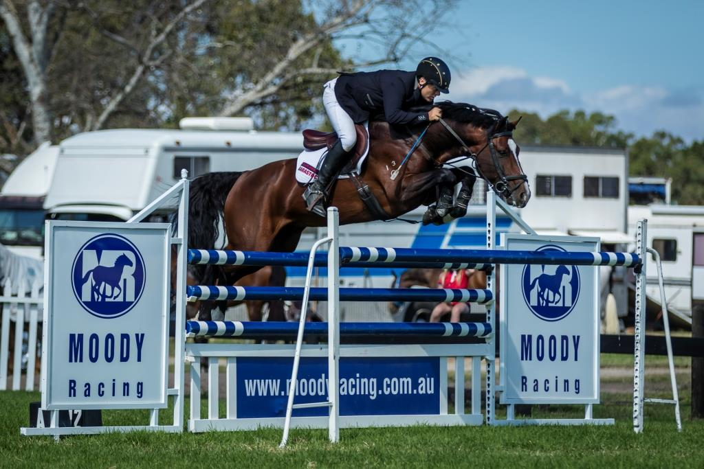 Oaks Volta looking very impressive over the 1.35m oxer