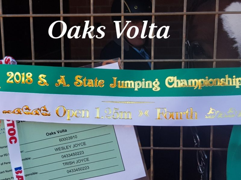 Great result for Oaks Volta