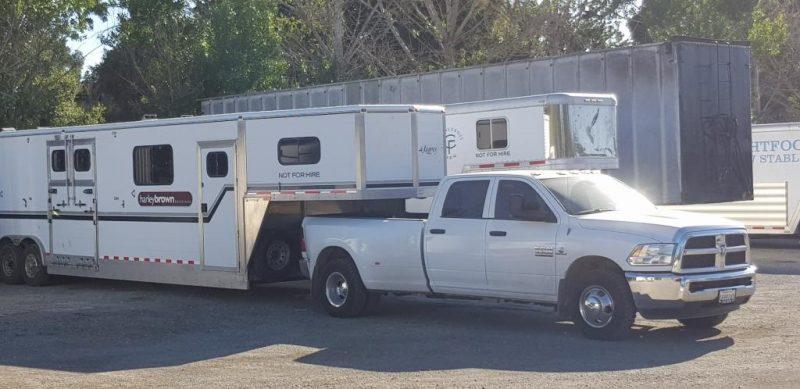 Harley Brown transport